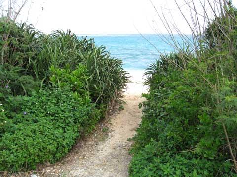 松葉博雄のいい写真撮りたいな:「海人が歩く道、それは海に続く海道です」