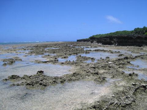 松葉博雄のいい写真撮りたいな:「南浮原島の小さなプール」