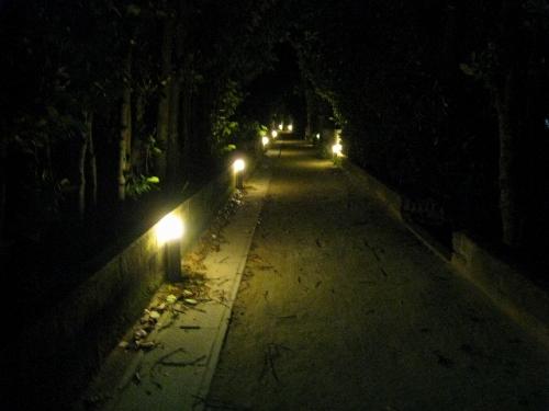 いい写真撮りたいな:「渡名喜島の道」