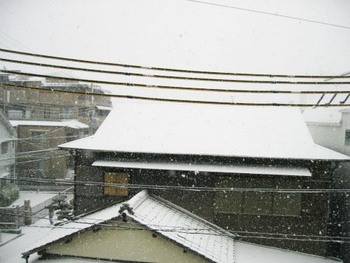 外は一面の雪