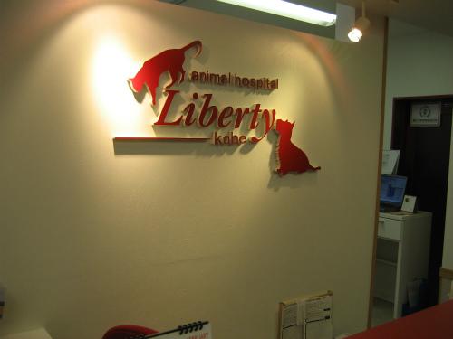 リバティ神戸動物病院の受付