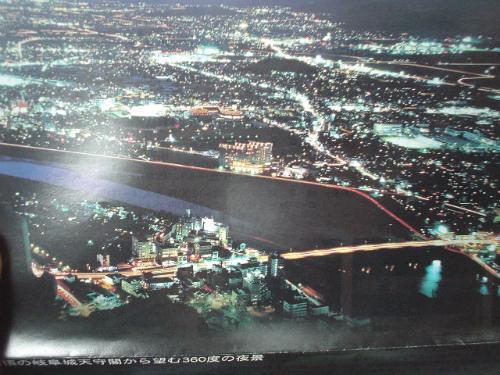 岐阜城から見る夜景