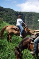 ワイピオ渓谷を見下ろすトレイルを馬に乗って巡る