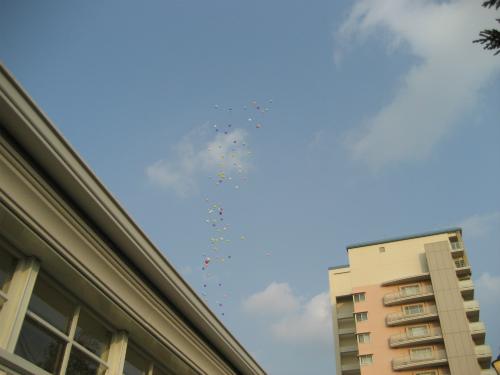 環境にも優しいバルーンを大空に放ちました