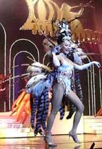 たくさんのダンサーが登場して、とても楽しいショーでした