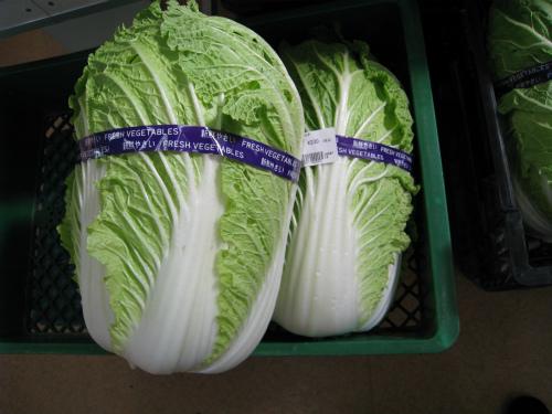 白菜とカブラ