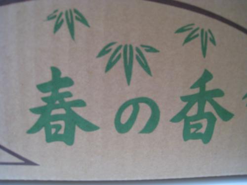 長岡京の筍
