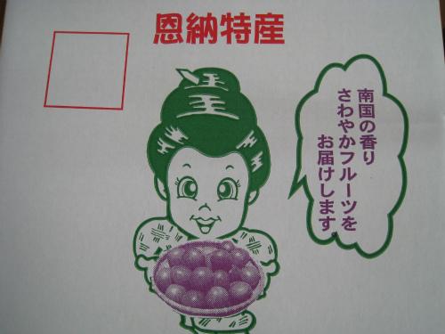 恩納村産パッションフルーツ