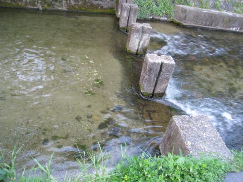 京都 砂地の川
