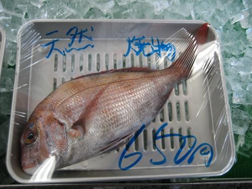 冷蔵ケースには、天然の鯛、カレイが並んでいます