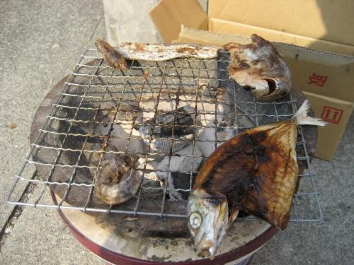 炭火で魚を焼いていました