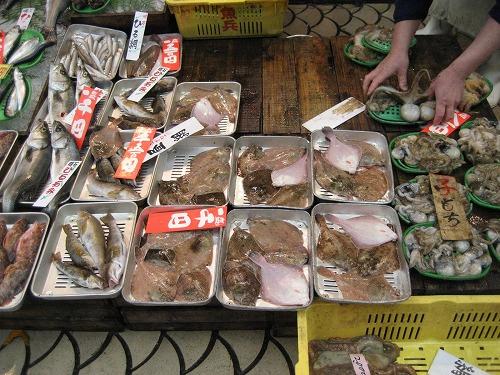 「とれとれ昼網」と書かれた値札が付けられた魚