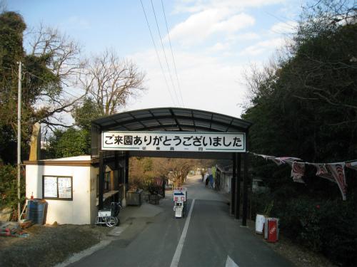 綾部山梅林の帰り道