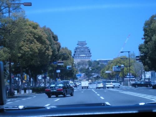 姫路城でお花見