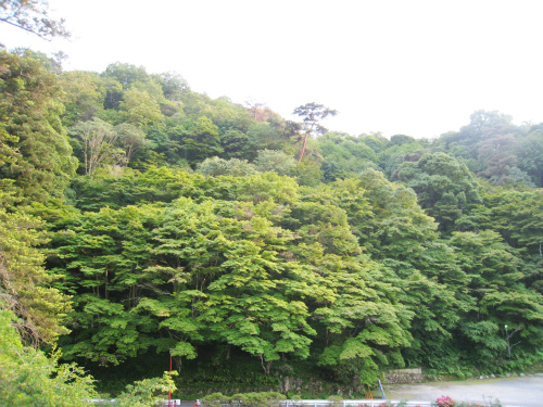 塩田温泉 上山旅館