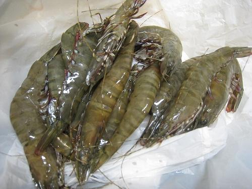 広島 忠海 海産