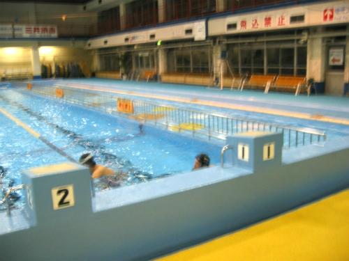 兵庫県立大水泳部、室内練習始まる